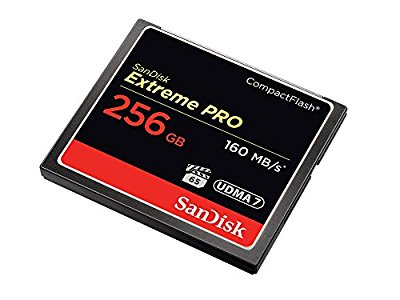 SanDisk Extreme Pro 256 GB 160 MB/s CompactFlash Memory Card : RAW